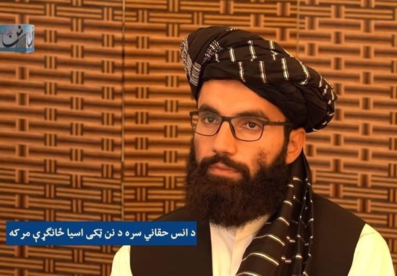 عضو کمیسیون سیاسی طالبان: جنگ بر ما تحمیل شده است